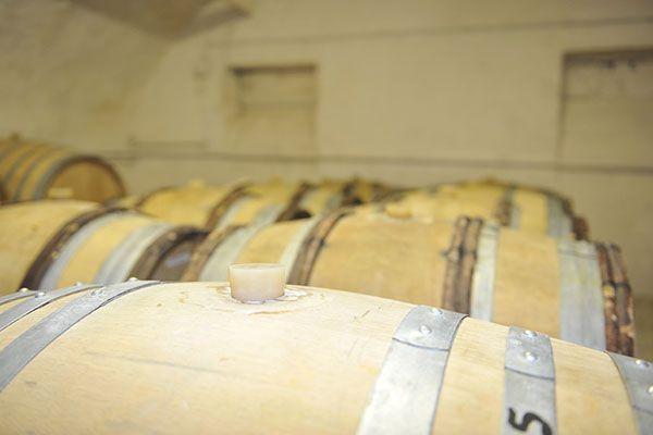 Fûts de Vin du Domaine de la Feuillarde